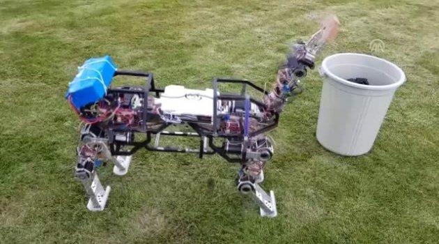 4 Ayaklı Arazi Robotu Üretildi