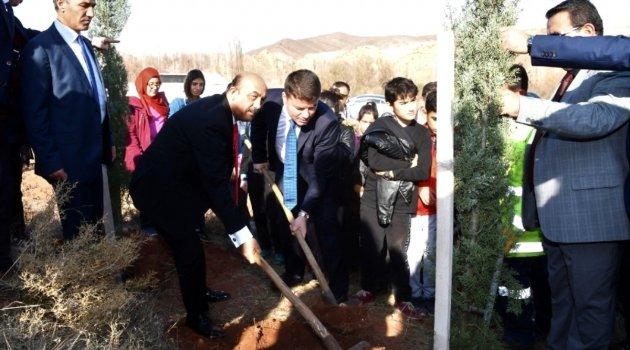 Aksaray Belediyesi öğretmenler adına 5 bin fidan dikti