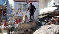 Arama kurtarma çalışmalarına hassas burunlu eğitimli köpekler de katıldı