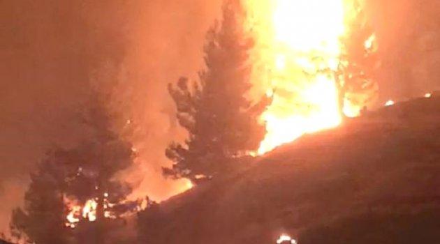 Kahramanmaraş'ta 35 hektar ormanlık alan yandı