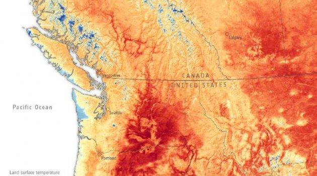 Kanada'da 'ısı kubbesi' kaynaklı 177 orman yangını devam ediyor