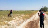 Kaybolan Suriyeli Bilal, 20 saat sonra bulundu
