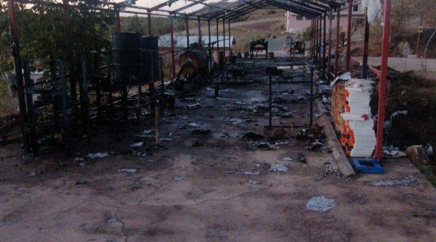 Kimyasal boya bulunan çadırda çıkan yangında 2 kişi yaralandı
