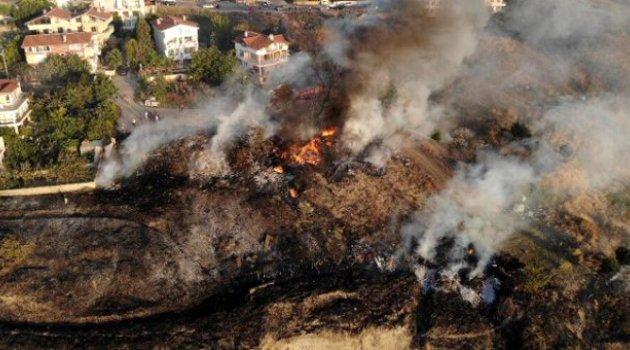Korkutan yangın: Yüzlerce hayvan telef oldu