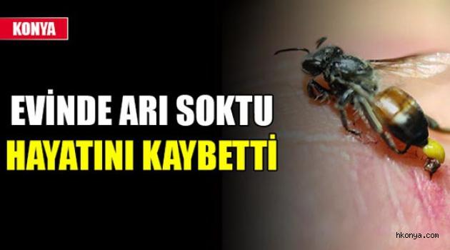 Arının soktuğu kişi hayatını kaybetti
