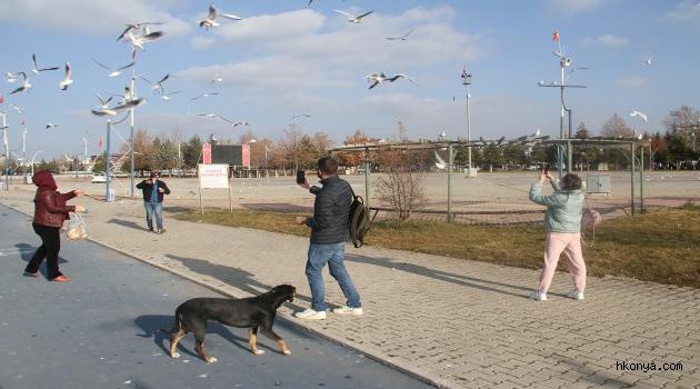 Beyşehir Gölü kıyıları yabancı turistlere kaldı