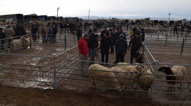 Ilgın'daki hayvan pazarı yeniden faaliyete açıldı